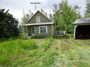 1 acre land and cabin/cottage,35 mins south of edmonton. $65,000