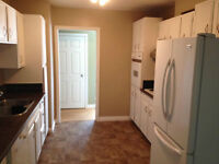 2 Rooms To rent to Students Brevoort Park