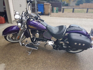 Purple Haze softail deluxe