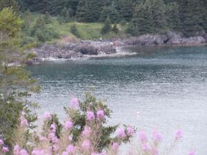 …1.24 ACRE OCEANFRONT..INCREDIBLE VIEWS..AVONDALE. St. John's Newfoundland image 1