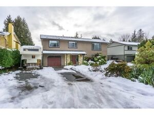 4 Bedroom in beautiful house in Mapleridge (Dover Rd & 218st)