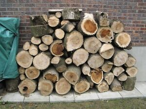 Firewood for sale $120