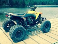yfz450 special edition  3500$ must go