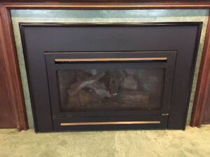 Heat n glo gas fireplace