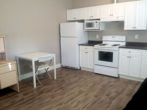 2 BED FURNISHED SUITE 5 MINS FROM TRU *NEW EXECUTIVE HOME*