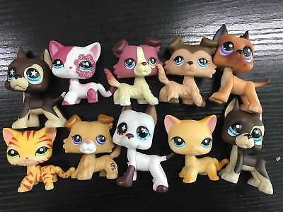 Littlest Pet Shop LPS Collection #577 Great Dane Dog Collie Dog Cat #339 3 Pets