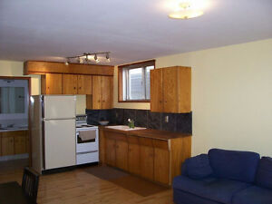 1 Bedroom suite in Old Strathcona -includes cable/wifi/utilities