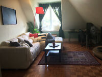 Spacious and sunny furnished 1 bedroom for rent in Centretown