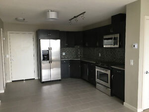 Downtown 2BR/2BA High Rise Condo for Rent - like new