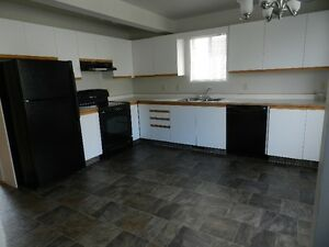 Newly Renovated 3 Bdr Townhouse In Peace River  *Open House*