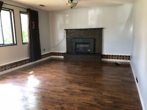 Price Drop!! 2 bed+den and 1 bath ground level basement
