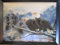 Variety of Eagle Artwork