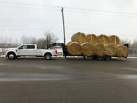 Custom hay hauling. Small or large orders. All over Alberta
