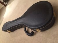 Premium Mandolin Hard Case £40