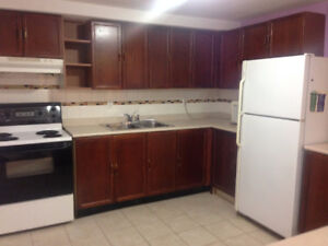 2 bedroom basement apartment with sep entrance