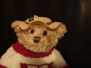 """Brass Button Bear Legendary Collection """"Clay"""" THE CANADA BEAR Belleville Belleville Area image 2"""