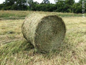 2018 First cut High quality HAY - round bales 4X4
