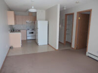 Top Floor 1BRM Apartment in Oversized Deck! Available Dec 9th