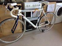 Vuelta light weight Viking bike