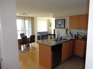 Downtown Highrise Fully furnished Condo for rent.