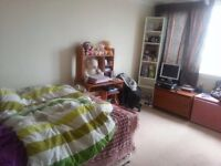 Large double room available for couple