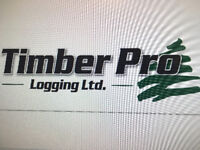 Timber Pro Logging has immediate openings