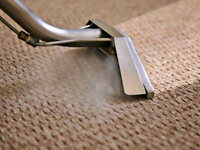 Best Deep Steam carpet cleaning AFFORDABLE PRICES!