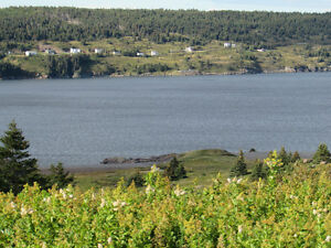 A LITTLE BIT OF PARADISE…19 JIM WALL'S ROAD..OCEAN VIEWS St. John's Newfoundland image 9