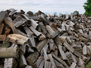 PREMIUM  FIREWOOD  Free Delivery   OAK , HICKORY , CHERRY