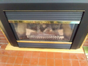 Fire place propane insert 29 by 22