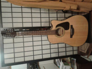 Takamine 12 String Acoustic-electric guitar