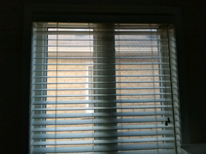 Windows blinds - different sizes available
