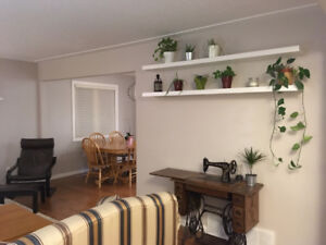 2 Bedrooms Available in Fully Renovated Bungalow - South West