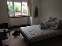 Large double room £570 all bills included