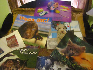 Posters & plaques for pet lovers-STRATHROY London Ontario image 2