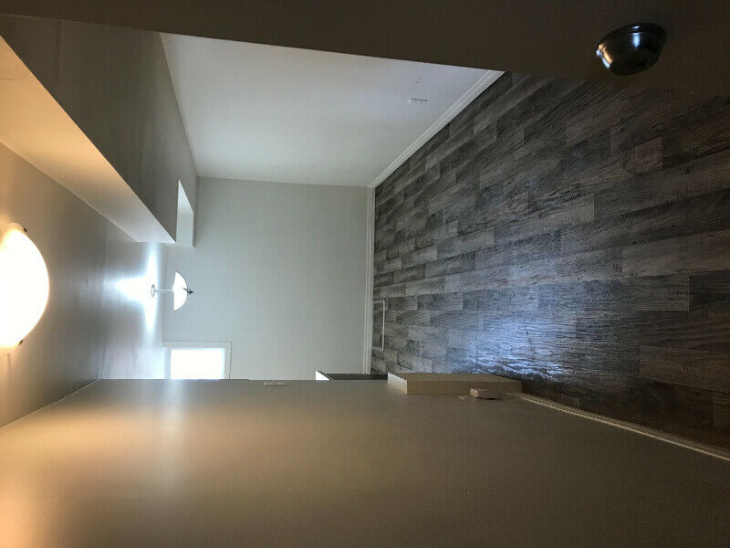 Basement Suite Near U of A | Apartments & Condos for Rent ...