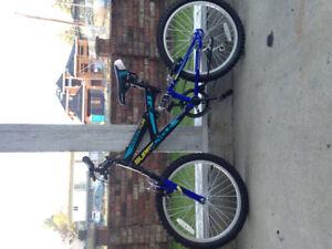 Brand New Canadian tire Kid Mountain Bike