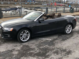 2013 Audi A5 Premium Plus, Technik Convertible