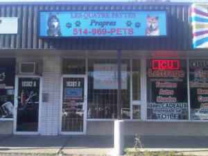 PROFESSIONAL DOG AND CAT GROOMING - 27% DISCOUNT�