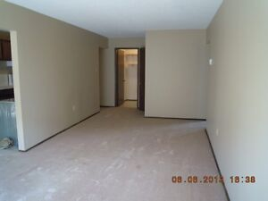 Very large 2 Bedroom NWCH - in suite laundry