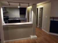 Stone & Stainless 1 bedroom suite with fireplace
