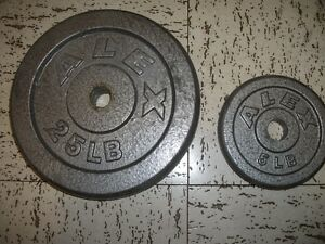 Two 25lb metal barbell plates and two 5 lb metal plates for sale