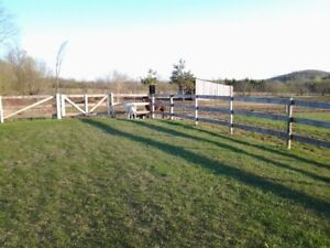 Looking for apartment on farm or stable