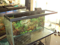 35 gallon fish tank for sale