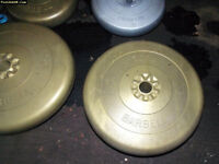 York Barbell weights. ( cement plastic free weights)