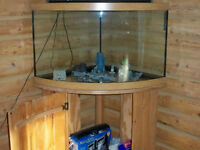 55 Gallon Corner Fish Tank w/Oak Stand
