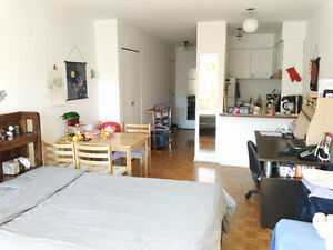 Downtown sunny apartment 1 1/2**ALL INCLUDED**(June 1st)
