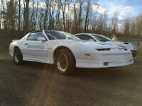 1989 Pontiac Trans Am Pace Car tribute/clone