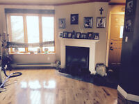8 1/2 BEAUTIFUL APARTMENT FOR RENT IN STE. DOROTHEE, LAVAL