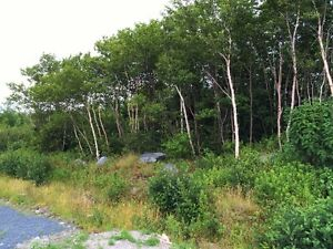 Land for Sale - Broad Cove Trinity Bay - Oceanview! St. John's Newfoundland image 4